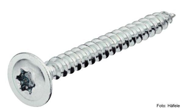 Rückwandschraube Tellerkopf TX 4,0x13 mm